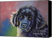 Animals Framed Prints Pastels Canvas Prints - Rainbows and Sunshine - Newfoundland Puppy Canvas Print by Michelle Wrighton