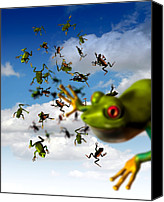 Raining Canvas Prints - Raining Frogs, Artwork Canvas Print by Victor Habbick Visions
