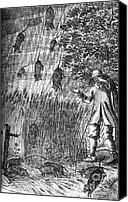 Raining Canvas Prints - Raining Rats, 1680 Canvas Print by Science Source