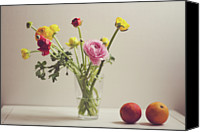 Israel Canvas Prints - Ranunculus Flowers And Red Oranges On White Table Canvas Print by Copyright Anna Nemoy(Xaomena)