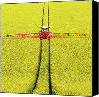 Rape Canvas Prints - Rape Seed Spraying Canvas Print by JT images