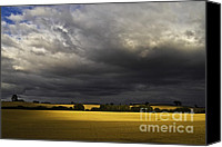 Landscapes Photo Canvas Prints - Rapefield Under Dark Sky Canvas Print by Heiko Koehrer-Wagner