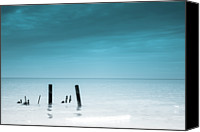 Wooden Post Canvas Prints - Rare Calm Canvas Print by Greg David