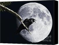 Ravens Canvas Prints - Raven Barking at the Moon Canvas Print by Wingsdomain Art and Photography