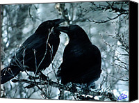Colette Canvas Prints - Raven Love Chat Canvas Print by Colette Hera  Guggenheim