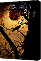 Luna Canvas Prints - Raven Moon Canvas Print by Bill Cannon