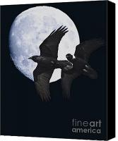 Goth Canvas Prints - Ravens of the Night Canvas Print by Wingsdomain Art and Photography