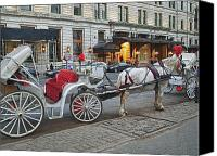 Horse Carriage Canvas Prints - Ready For A Ride Canvas Print by Kathy Jennings