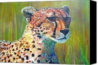 Cheetah Painting Canvas Prints - Ready for the Hunt Canvas Print by Michael Durst