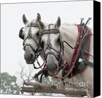 Chuck Wagon Canvas Prints - Ready Canvas Print by Fred Lassmann