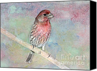 Finches Canvas Prints - Ready to Sing My Song Canvas Print by Betty LaRue