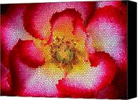 Flower Canvas Prints - Red and White and Glass Canvas Print by Leonard Rosenfield