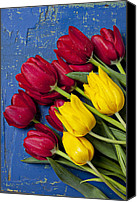 Tables Canvas Prints - Red and yellow tulips Canvas Print by Garry Gay