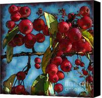 Red Berries Canvas Prints - Red Berries Canvas Print by Colleen Kammerer