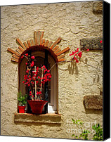 Window And Doors Canvas Prints - Red Bougainvillea in Window Canvas Print by Lainie Wrightson