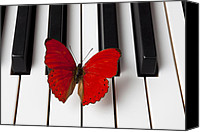 Piano Canvas Prints - Red Butterfly On Piano Keys Canvas Print by Garry Gay