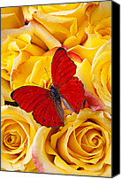 Aesthetic Canvas Prints - Red butterfly with yellow roses Canvas Print by Garry Gay