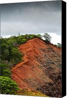 Exposed Canvas Prints - Red Cliff at Waimea Canvas Print by Christi Kraft