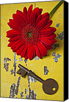Peeling Canvas Prints - Red Daisy and Old Key Canvas Print by Garry Gay
