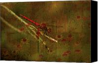 Insects Mixed Media Canvas Prints - Red Dragonfly Dining Canvas Print by Bonnie Bruno