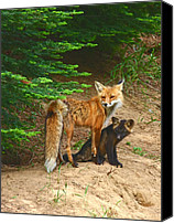 Forest Pyrography Canvas Prints - Red Fox and Kit Canvas Print by Marvil LaCroix