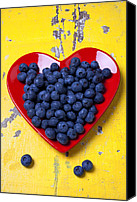 Still Life Tapestries Textiles Canvas Prints - Red heart plate with blueberries Canvas Print by Garry Gay