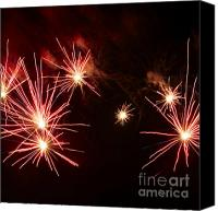 Pyrotechnics Canvas Prints - Red lily Canvas Print by Agusti Pardo Rossello