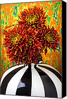 Chrysanthemums  Canvas Prints - Red mums in striped vase Canvas Print by Garry Gay