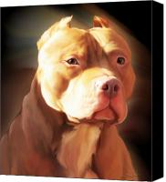 Pitbull Canvas Prints - Red Pit Bull by Spano Canvas Print by Michael Spano
