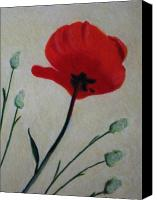 Poppy Drawings Canvas Prints - Red Poppy Canvas Print by John Lasco