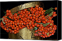 Phyllis Denton Canvas Prints - Red Pyracantha Berries Canvas Print by Phyllis Denton