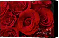 James Insogna Canvas Prints - Red Rose Bouquet   Canvas Print by James Bo Insogna
