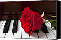 Red Rose Canvas Prints - Red rose on piano Canvas Print by Garry Gay