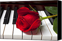 Leaves Canvas Prints - Red rose on piano keys Canvas Print by Garry Gay