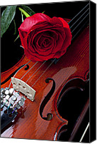 Play Canvas Prints - Red Rose With Violin Canvas Print by Garry Gay