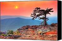 Roost Canvas Prints - Red Sky Over Ravens Roost Canvas Print by Dan Carmichael