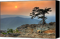 Roost Canvas Prints - Red Sky Over Ravens Roost II Canvas Print by Dan Carmichael