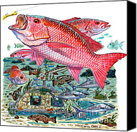 Gag Grouper Canvas Prints - Red Snapper Canvas Print by Carey Chen