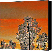 Fine Photography Art Canvas Prints - Red Sunset With Trees Canvas Print by Ben and Raisa Gertsberg