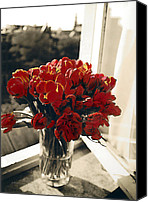 Bouquet Pastels Canvas Prints - Red Tulips in Window Canvas Print by Linda  Parker