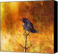 Walker Digital Art Canvas Prints - Red-Winged Blackbird Abstract Canvas Print by J Larry Walker