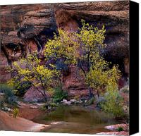Tranquil Canvas Prints - RedCliffs Autumn Canvas Print by Jim Speth