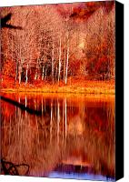 Fall Scenes Canvas Prints - Reflecting on Birch Canvas Print by Emily Stauring