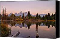 Grand Teton Canvas Prints - Reflection Of Pine Trees In Lake Canvas Print by Gemma