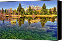 Grand Teton Canvas Prints - Reflection Of Trees Canvas Print by David Hensley