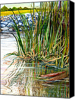 Wetlands Canvas Prints - Reflections Canvas Print by Elaine Hodges