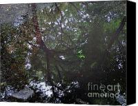 Patricia Schnepf Canvas Prints - Reflections of a Rain Puddle in the Park Canvas Print by Patricia  Schnepf