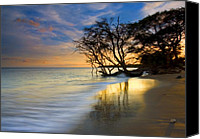 Reflections Canvas Prints - Reflections of PAradise Canvas Print by Mike  Dawson