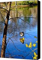 Nature Tapestries Textiles Special Promotions - Reflections of Spring Canvas Print by Felix Zapata