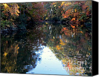 Patrick Mills Canvas Prints - Reflections on Maury Lake  Canvas Print by Patrick Mills